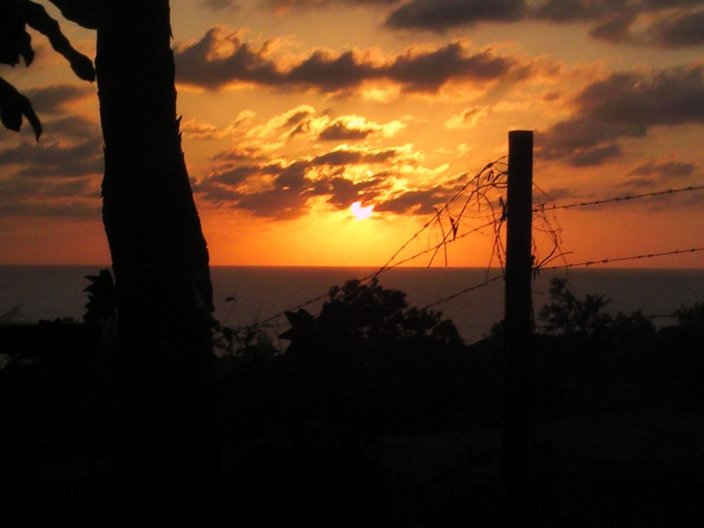 living in negril - sunset from the shack