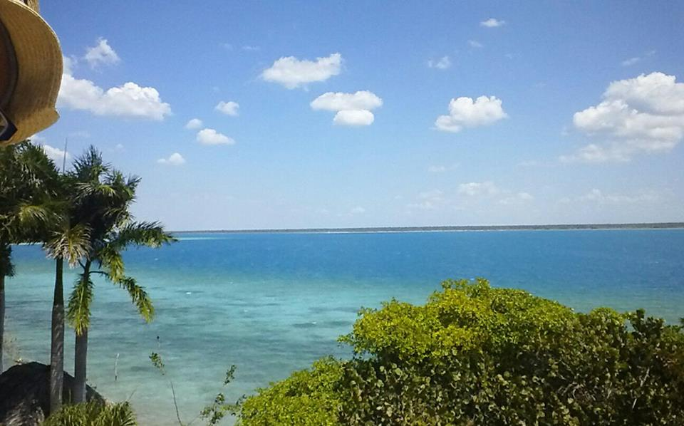 pet & house sitting in Bacalar